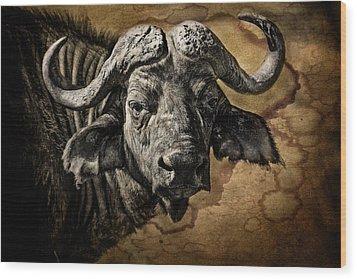 Buffalo Portrait Wood Print by Mike Gaudaur