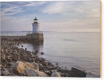 Bug Light Wood Print by Eric Gendron
