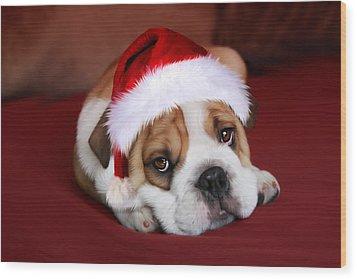 Bully For Santa Wood Print by Julie L Hoddinott