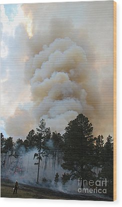 Wood Print featuring the photograph Burnout Near Song Dog Road by Bill Gabbert