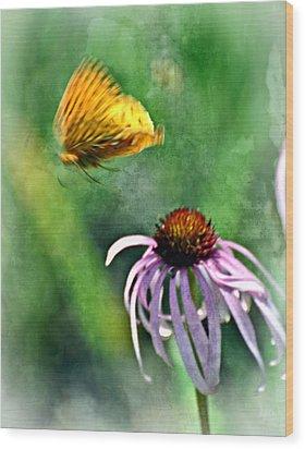 Butterfly In Flight Wood Print by Marty Koch