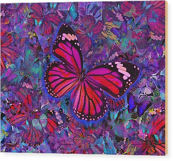 Butterfly Red Explosion Wood Print by Alixandra Mullins