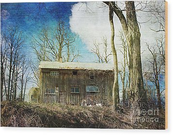 Cabin Fever Wood Print by A New Focus Photography