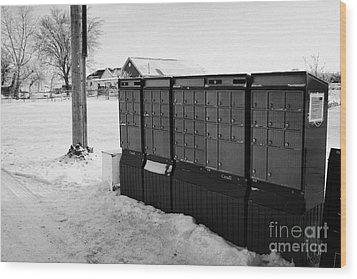 canada post post mailboxes in rural small town Forget Saskatchewan Canada Wood Print by Joe Fox