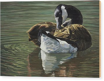 Canadian Goose Wood Print by Lucie Bilodeau