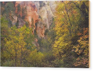Canyon Kaleidoscope  Wood Print by Peter Coskun