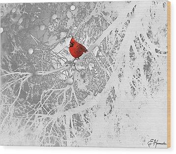 Cardinal In Winter Wood Print by Ellen Henneke