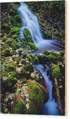Cascade Creek Wood Print by Chad Dutson