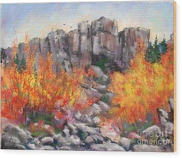 Castle Rock Wood Print by Bruce Schrader