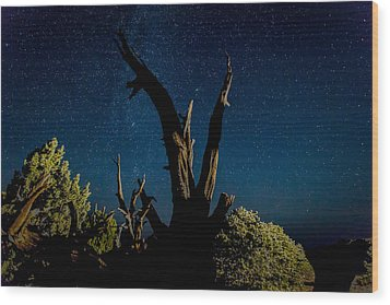 Cathedral Valley Night Sky Wood Print by Jennifer Grover