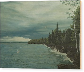 Cave Point Wood Print by James Willoughby III
