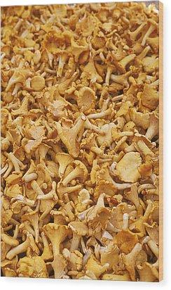 Chanterelle Mushroom Wood Print by Anonymous