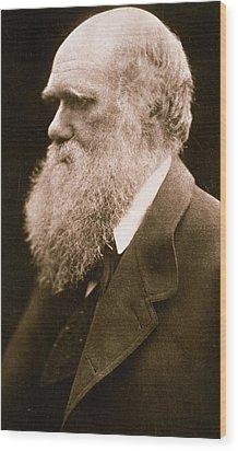 Charles Darwin Wood Print by Julia Margaret Cameron