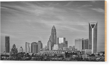 Charlotte Chrome Wood Print by Brian Young