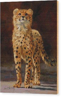 Cheetah Cub Wood Print by David Stribbling