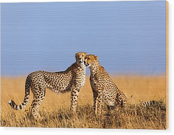 Cheetah Mother With Daughter Masai Mara Wood Print by Maggy Meyer