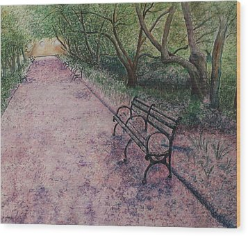 Cherry Blossom Pathway Wood Print by Patsy Sharpe