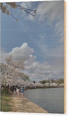 Cherry Blossoms - Washington Dc - 011370 Wood Print by DC Photographer