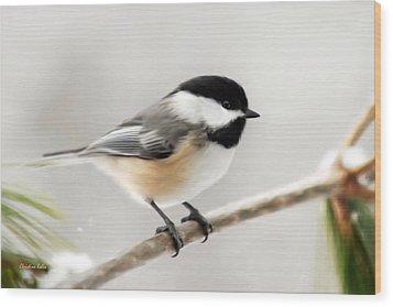 Chickadee Wood Print by Christina Rollo