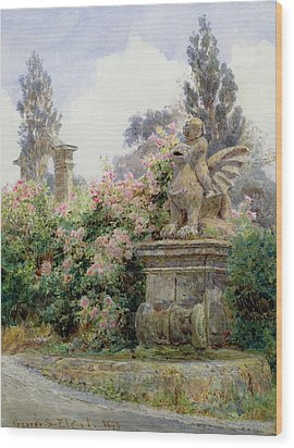 China Roses Villa Imperiali Genoa Wood Print by George Samuel Elgood