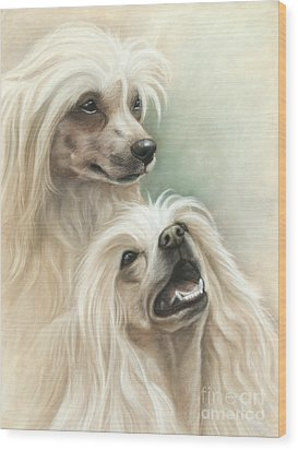 Chinese Crested Wood Print by Tobiasz Stefaniak