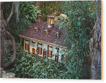 Christmas Display - Us Botanic Garden - 011342 Wood Print by DC Photographer