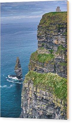 Cliffs Of Moher 41 Wood Print by Douglas Barnett