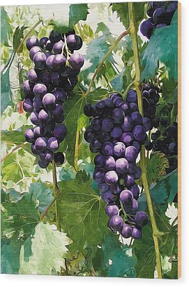 Clusters Of Red Wine Grapes Hanging On The Vine Wood Print by Lanjee Chee
