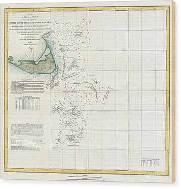 Coast Survey Map Of Nantucket And The Davis Shoals Wood Print by Paul Fearn