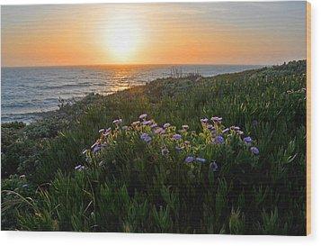 Coastal Sunset Wood Print by Lynn Bauer