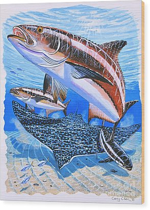 Cobia On Rays Wood Print by Carey Chen