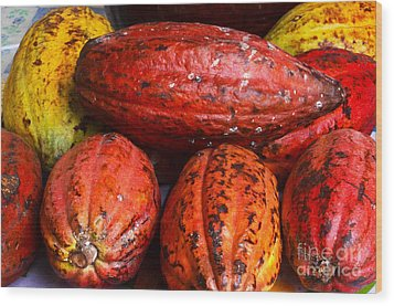Cocoa Pods Wood Print by Pravine Chester
