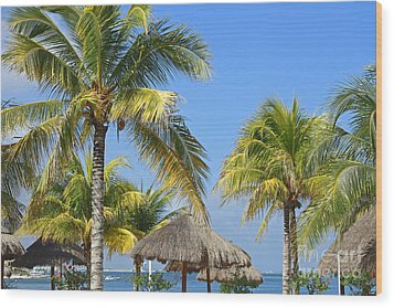 Coconut Palm Forest Wood Print by Charline Xia