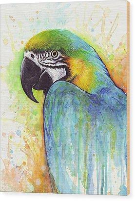 Macaw Painting Wood Print by Olga Shvartsur