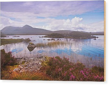 Colorful World Of Rannoch Moor. Scotland Wood Print by Jenny Rainbow