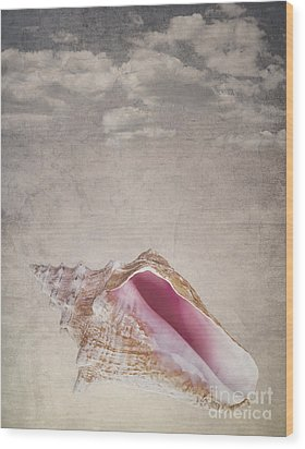 Conch Shell On Vintage Background Wood Print by Jane Rix