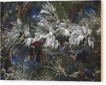 Cones Wood Print by Skip Willits