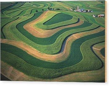 Contour Farm Art Aerial  Wood Print by Blair Seitz