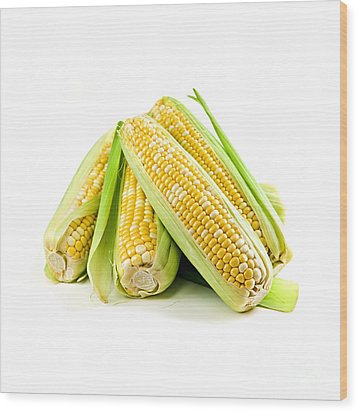 Corn Ears On White Background Wood Print by Elena Elisseeva