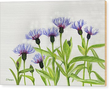 Cornflowers Wood Print by Sharon Freeman