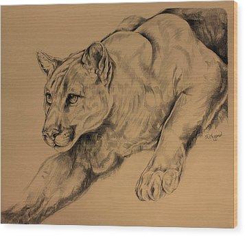 Cougar Wood Print by Derrick Higgins