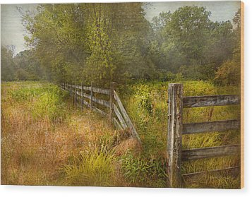 Country - Landscape - Lazy Meadows Wood Print by Mike Savad