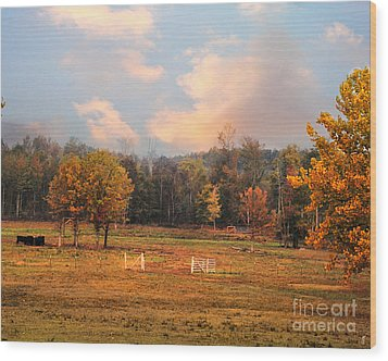 Country Morning Wood Print by Jai Johnson