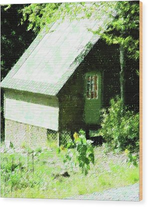 Country Shed Wood Print by Florene Welebny
