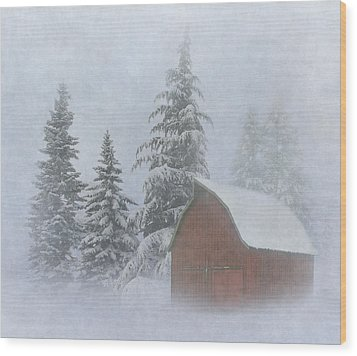 Country Winter Wood Print by Angie Vogel