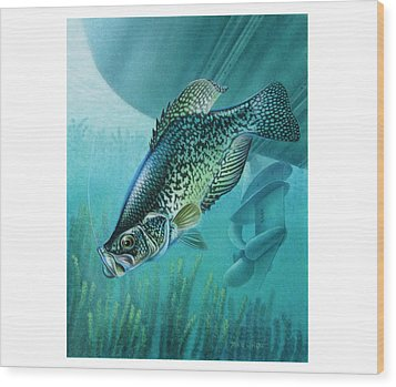 Crappie And Boat Wood Print by JQ Licensing