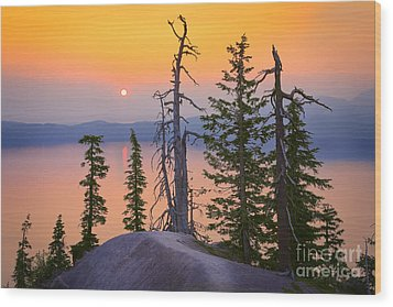 Crater Lake Trees Wood Print by Inge Johnsson