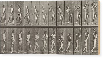 Cricketer Wood Print by Eadweard Muybridge