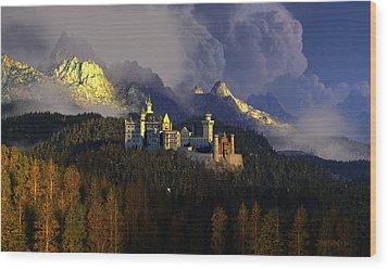Crown Of Swans Wood Print by Dieter Carlton
