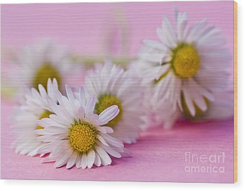 Daisies On Pink Wood Print by Jan Bickerton